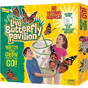 Large butterfly kit for home and school