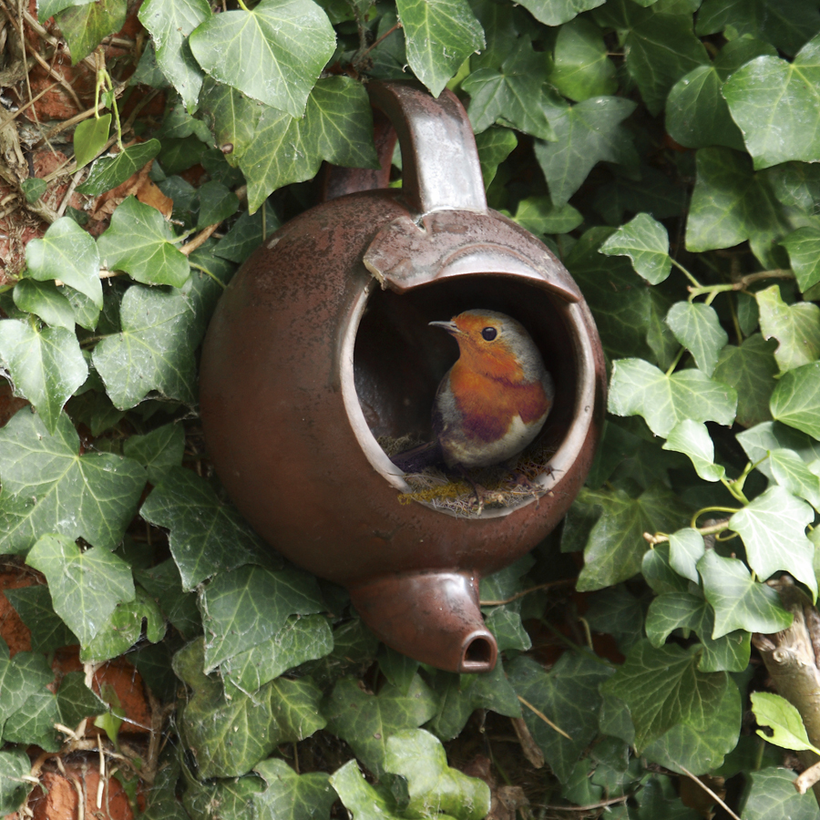 how to make fat balls for birds wild bird food. Black Bedroom Furniture Sets. Home Design Ideas