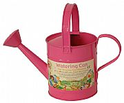 Watering Cans and Buckets
