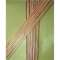 10 x Bamboo Canes - 0.9m