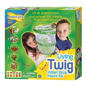 Indian Stick Insect Kit