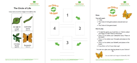 Circle Of Life Butterfly Game Lesson Plan Butterflies