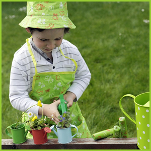 Butterfly Planting Set